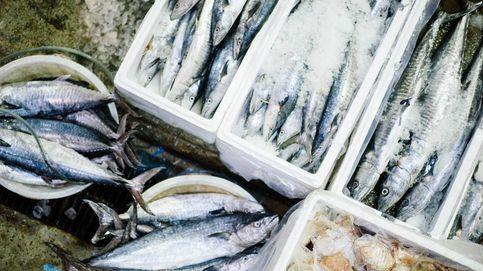 Sanidad alerta de la presencia mercurio en el pescado y cambia sus recomendaciones
