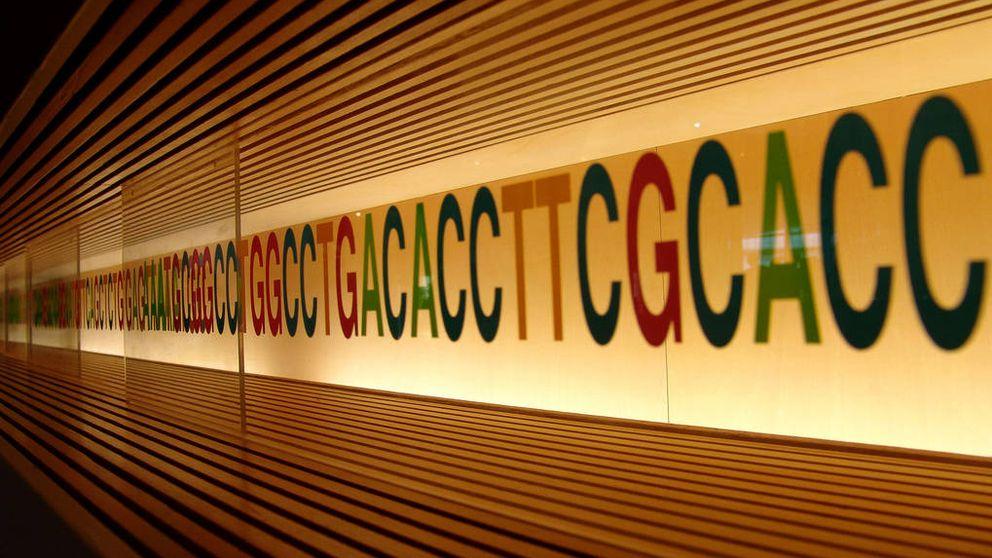 Entrevistas genéticas: las empresas revisarán tu ADN para decidir si te contratan