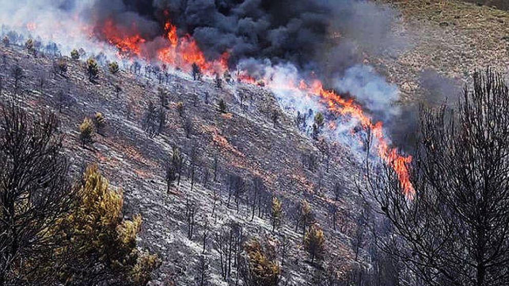 Estabilizado el fuego en Terque (Almería) que ha arrasado 1.600 hectáreas