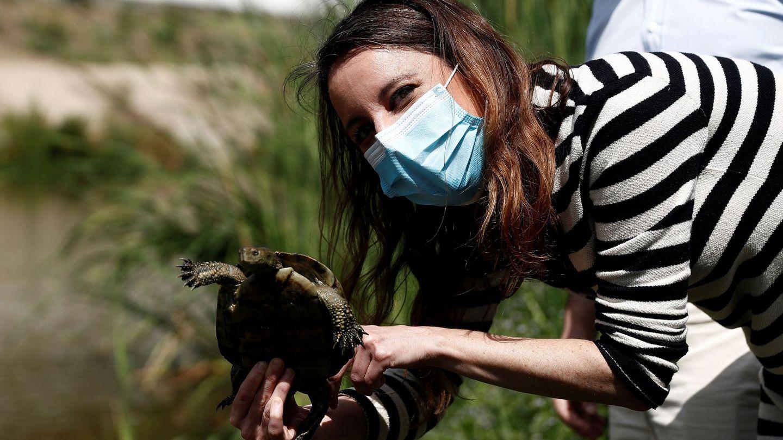 Andrea Levy, liberando unos galápagos en el Manzanares. (EFE)