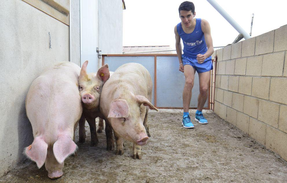 Foto: Dani Mateo combina a la perfección su faceta de atleta con la de granjero (Foto: Álvaro Martínez/Diario de Soria).