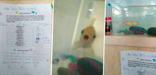 Post de Se va de vacaciones y deja a su pez en el portal para que lo cuiden los vecinos