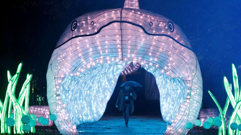 La Navidad en París se llena de criaturas marinas y luz