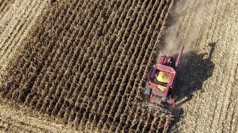 Siembra de maíz en Illinois