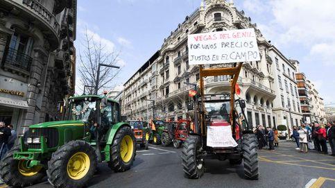 Multitudinaria tractorada en Granada
