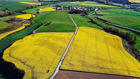 Navarra ofrece su mejor paleta de colores