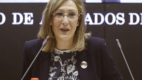 La jueza allana las elecciones al ICAM tras archivar la denuncia contra la cúpula