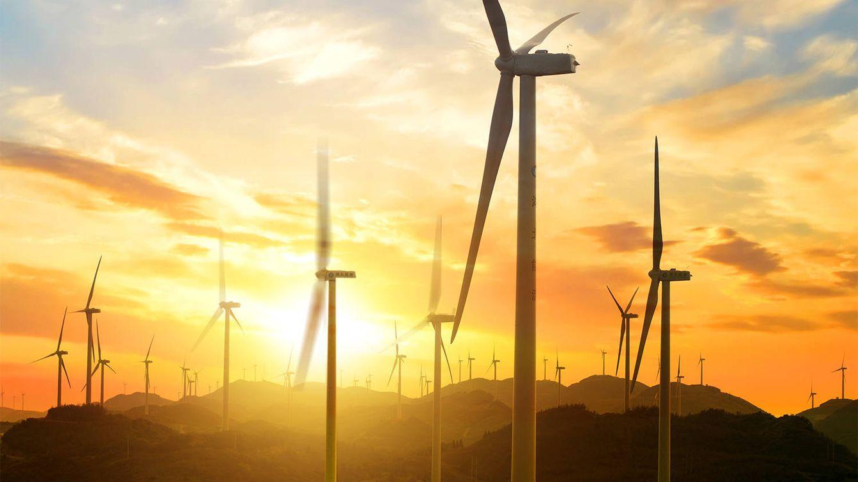 La eólica atiende ya la demanda una de cada cinco veces que enciendes la luz
