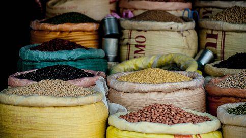 El efecto vital que tiene una dieta alta en proteínas vegetales