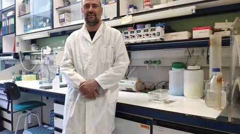 El CSIC pretende ensayar con humanos su vacuna más avanzada esta primavera