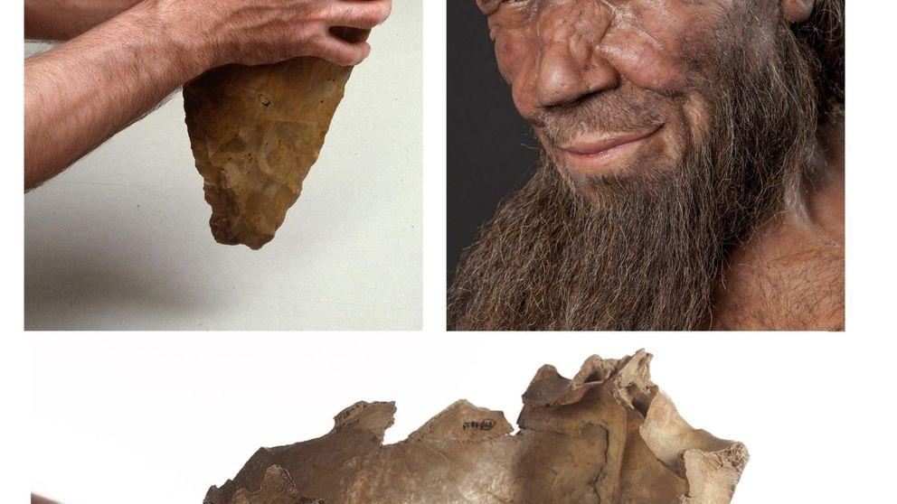 La clave por la que sobrevivimos (y los neandertales, no)