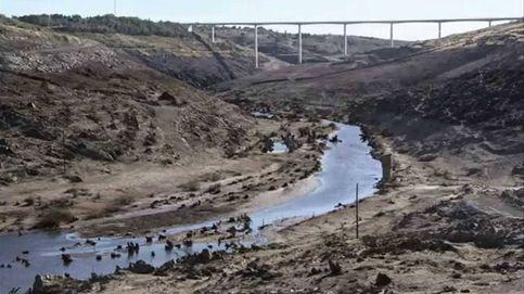 Los 15 pantanos españoles inservibles que los ecologistas proponen eliminar