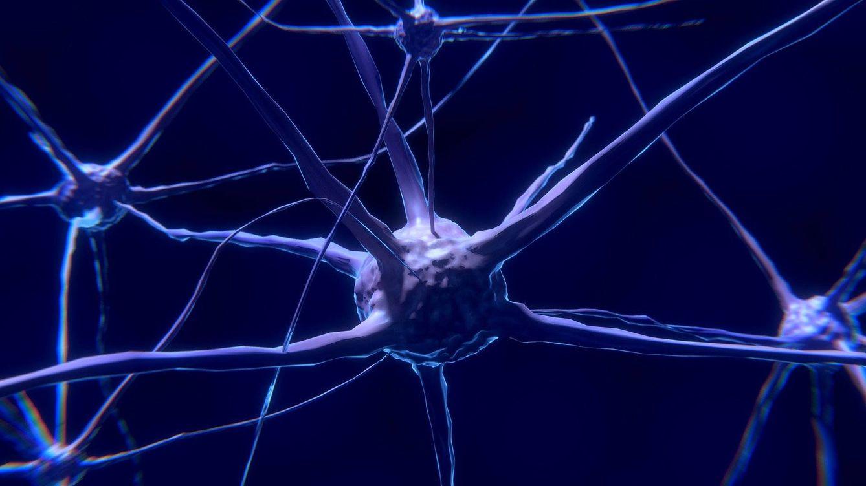 Foto: Simulación de una neurona. (Pixabay)
