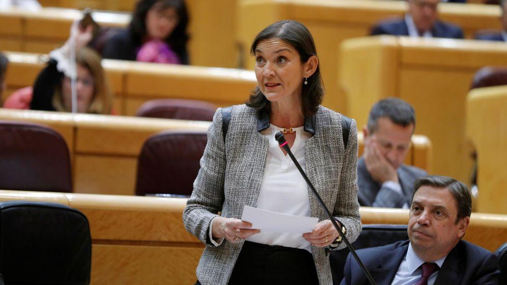 Foto: La ministra de Industria, Comercio y Turismo, Reyes Maroto, en el Senado. (EFE)