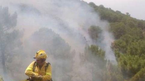 Medio centenar de bomberos combaten un incendio en Benahavís, Málaga