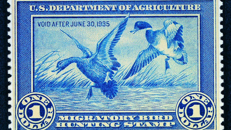 La primera edición del 'Federal Duck Stamp' en 1934. U.S. Fish