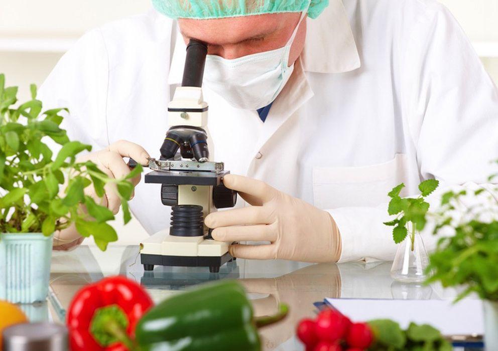 Qu mica en la cocina la explicaci n cient fica de los for Resumen del libro quimica en la cocina