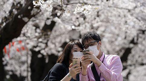 'Wakaresaseya', los 'espías' de Japón que se encargan de sabotear tu matrimonio