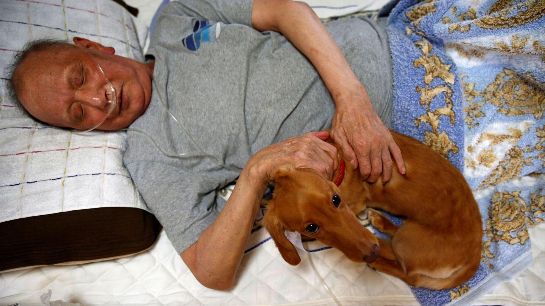 Las personas enfermas también aprovechan los beneficios de dormir con perros (Reuters/Kim Kyung-Hoon)