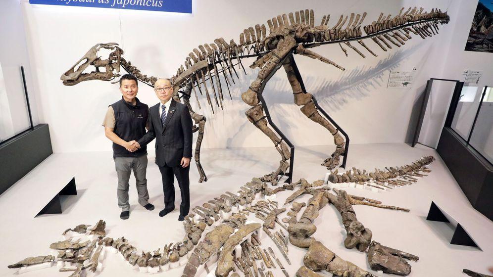 Foto: Esqueleto de un hadrosáurido en Japón. (EFE)