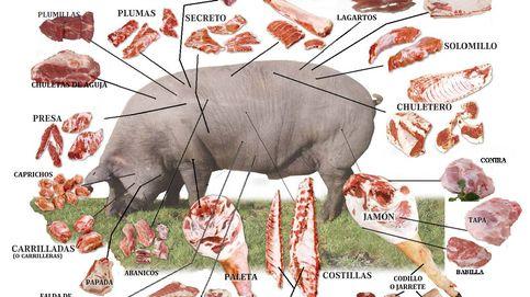 Del cerdo ibérico al tomate rosa: alimentos que podrían desaparecer y cómo evitarlo