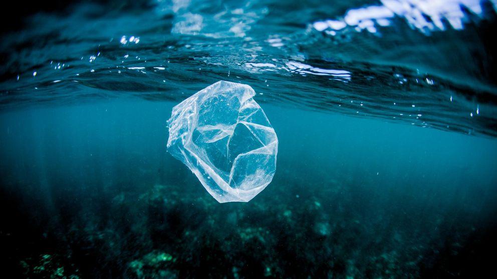 Bacterias devoradoras de plástico para luchar contra la contaminación