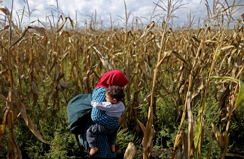 Foto: Una refugiada carga con su bebé cuando intenta cruzar la frontera de Hungría hacia Austria, el 12 de septiembre de 2015 (Reuters).