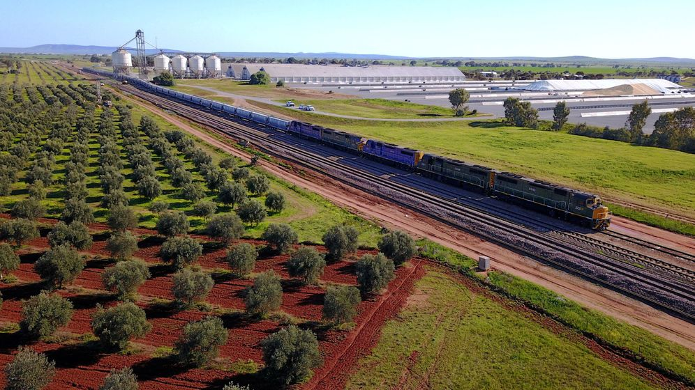 Foto: Un tramo de vías de tren en Australia. (Reuters)