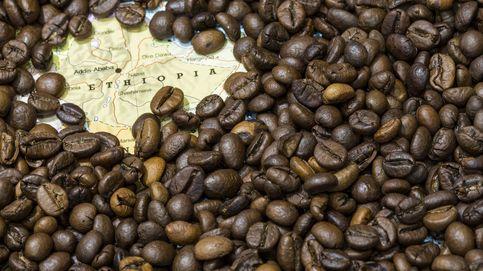 Los rituales del café: qué dice esta bebida de nosotros como especie