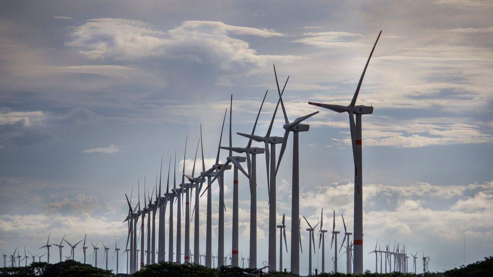 Foto: Un parque de energía eólica. (EFE)
