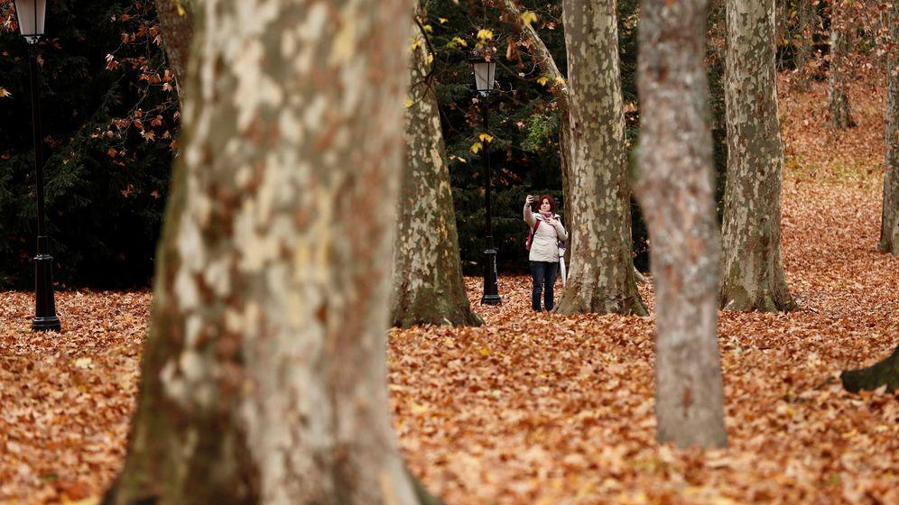Foto:  Una mujer se hace una foto con un móvil en un parque de Pamplona. (EFE)