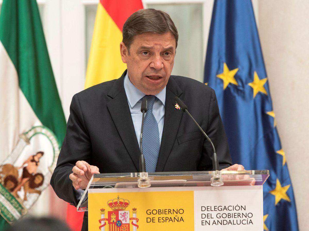Foto: El ministro de Agricultura, Luis Planas, en Sevilla. (EFE)