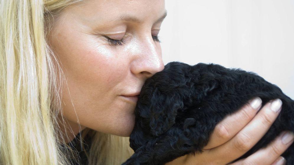 Foto: La princesa Mette-Marit con un perrito (Gtres)