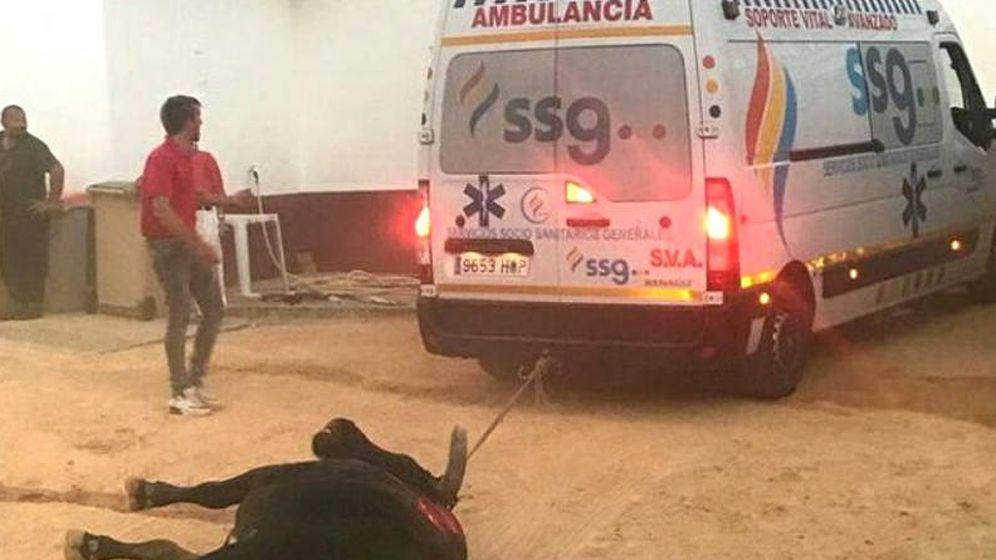 Foto: La ambulancia arrastra al toro fuera de la plaza de Valdepeñas (Foto: Podemos)
