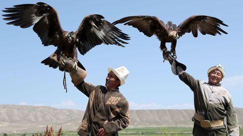 Cetreros en el festival de caza tradicional en Kirguistán