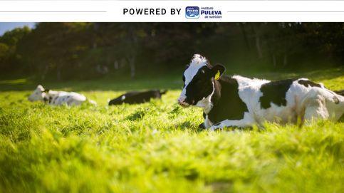 La primera ganadería ecológica de España cumple 20 años