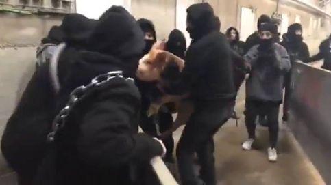 Dos detenidos por asaltar un matadero de Girona para protestar contra el sacrificio de animales