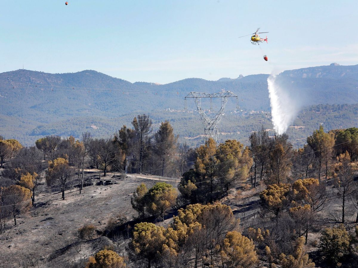 Foto: Los bomberos dan por estabilizado el incendio de Castellví de Rosanes (Barcelona). (EFE)