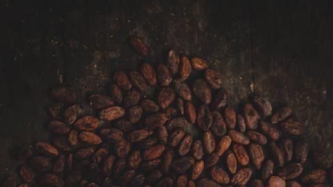 El chocolate y el cacao no son lo mismo: ¿cuál es mejor?