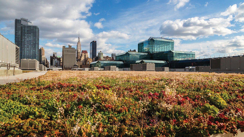 La expansión de los green roofs: los diez jardines urbanos más espectaculares