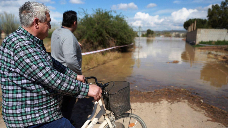 [Pincha aquí para ver más imágenes de la crecida del río Ebro]