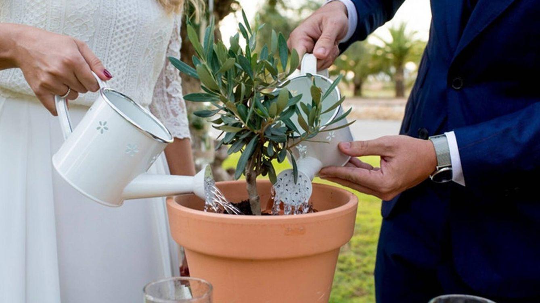Ceremonia de la plantación: el ritual de boda para amantes de la naturaleza