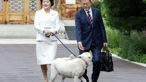 Kim Jung-sook, la Jolly Lady de Corea: cantante, animalista y anfitriona de Letizia