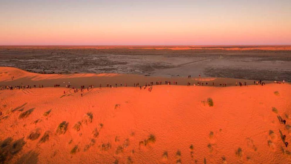 Un perro aparece en mitad del desierto y encuentran a su dueño en un festival