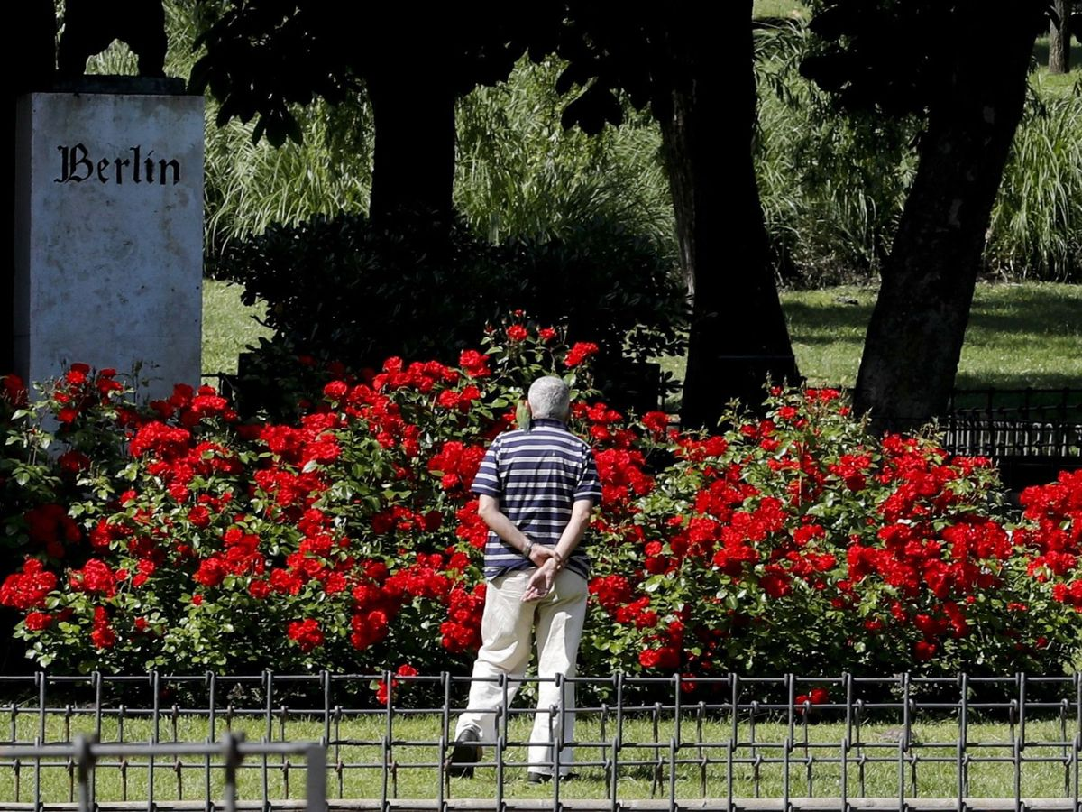 Foto: Un hombre pasea por el madrileño Parque de Berlín. (EFE)
