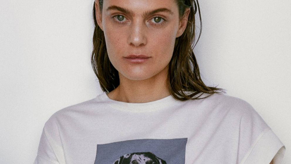 Si te gustan los perros, necesitas esta camiseta de Massimo Dutti en tu vida
