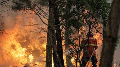 Los grandes incendios forestales dejan de ser cosa del verano