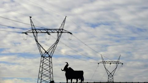 El 'truco' del mercado eléctrico o ¿por qué el recibo de la luz es diferente en España?