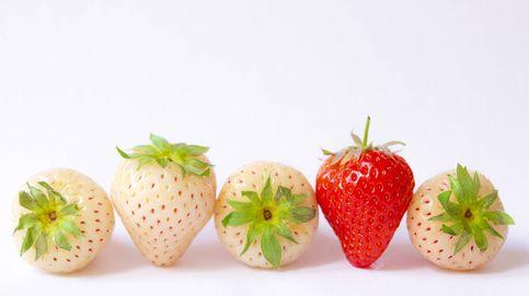 Las fresas también pueden ser blancas y saber a piña