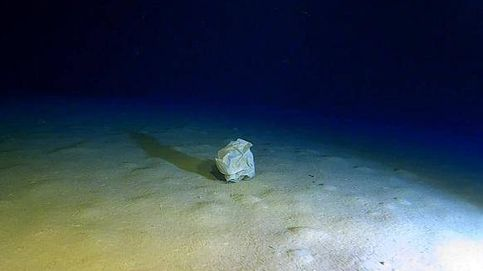 El mayor vertedero marino del mundo está en el Mediterráneo